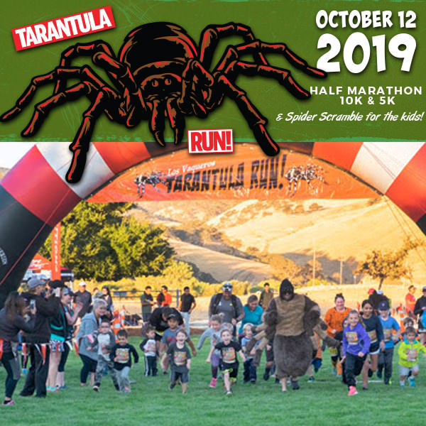 2019-tarantula-run-square