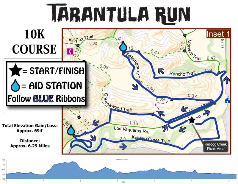 Tarantula-Run-10K