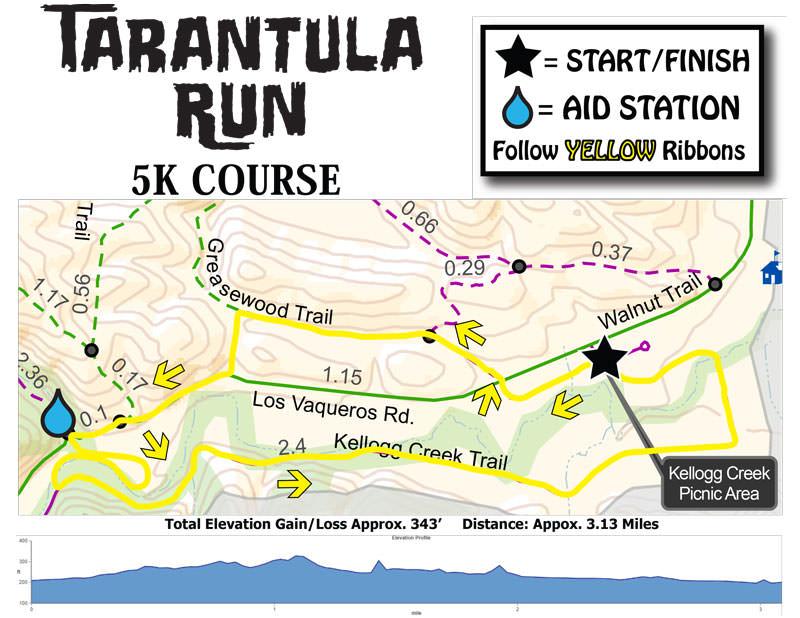 Tarantula-Run-5K