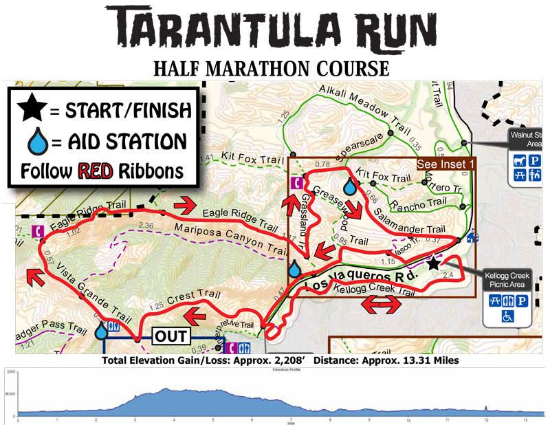 Tarantula-Run-Half