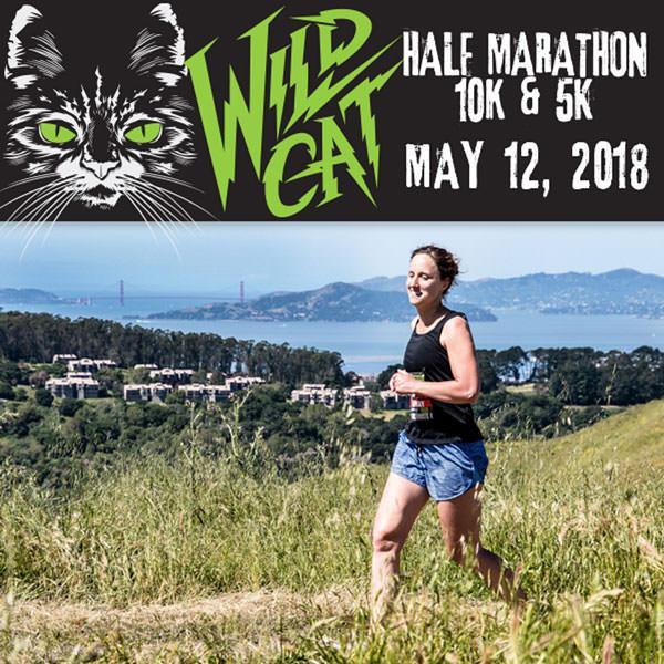 2018-Wildcat-square