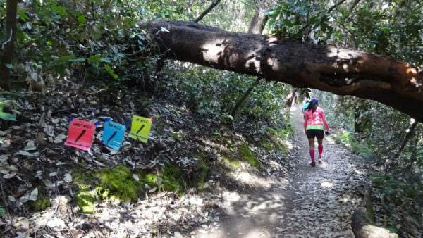2017.06.03---Brazen-Racing---Trailquake-Summit-Rock-Edition---014