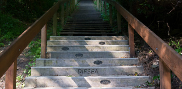 Double Dipsea Results Header Image
